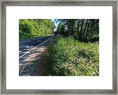 Roadside Wildflowers Framed Print by Laurie Breton