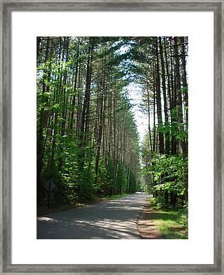 Roadway At Fish Creek Framed Print by Jerrold Carton