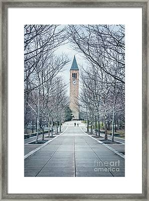 Roam Framed Print by Evelina Kremsdorf