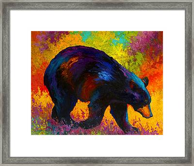 Roaming - Black Bear Framed Print by Marion Rose