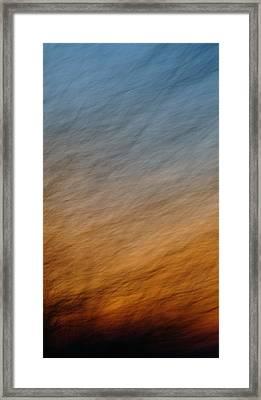 Roar Framed Print by Melody Dawn Germain