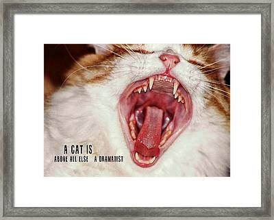 Roar Quote Framed Print by JAMART Photography