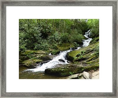 Framed Print featuring the photograph Roaring Fork Falls June 2017 by Joel Deutsch