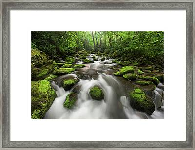 Roaring Fork Great Smoky Mountains National Park Tennessee Framed Print by Mark VanDyke