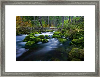 Roaring River Framed Print by Randall Ingalls