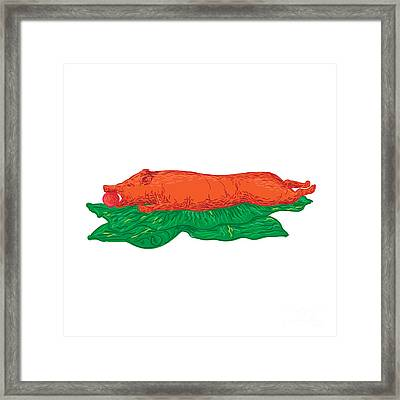 Roast Pig Lechon Banana Leaves Drawing Framed Print by Aloysius Patrimonio