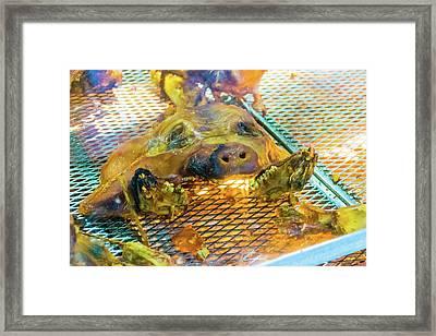 Roasted Grill Pig 2 Framed Print by Ivan Santiago