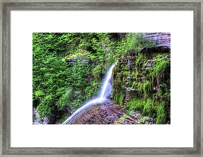 Robert H. Treman State Park Bounce Ithaca Ny Framed Print