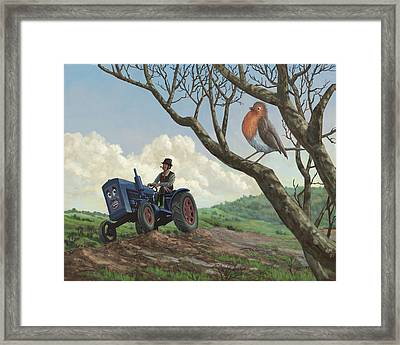 Robin In Field Looking At Farmer Framed Print by Martin Davey