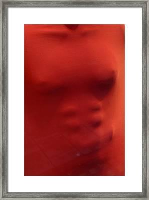 Robin Redchest Framed Print by Jez C Self