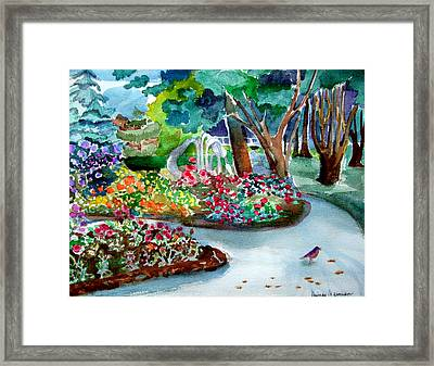 Robin Walk Framed Print by Mindy Newman