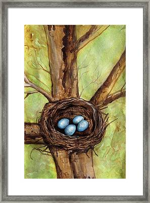Robin's Nest Framed Print by Carrie Jackson