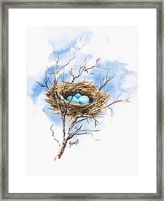 Robin's Nest Framed Print by Sam Sidders