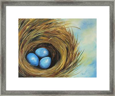 Robin's Three Eggs II Framed Print