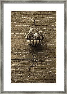 Framed Print featuring the photograph Rochester, New York - Wall And Flowers Sepia by Frank Romeo