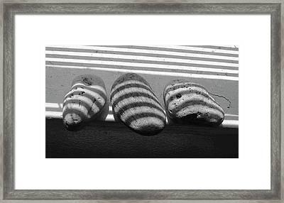 Rock Arrangement Framed Print by Sandra Church