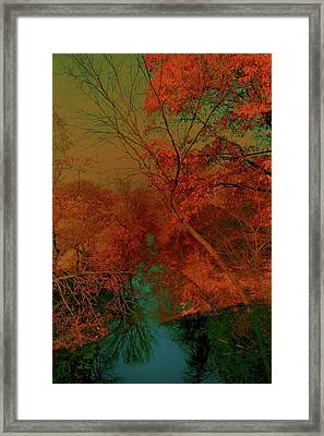 Rock Creek At M Framed Print