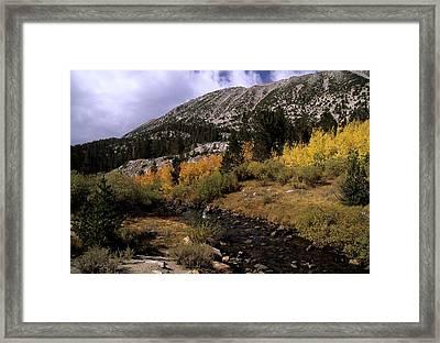 Rock Creek Fall Color Framed Print by Don Kreuter