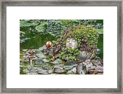 Rock Face Revisited Framed Print