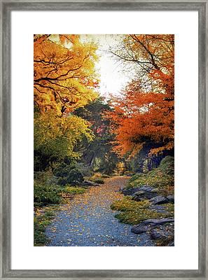 Rock Garden Path Framed Print