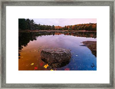 Rock In A Pond Acadia Natioanl Park Maine Framed Print by George Oze