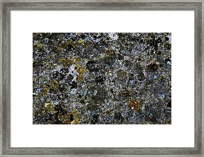 Rock Lichen Surface Framed Print