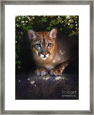 Rock Lion Framed Print by Robert Foster