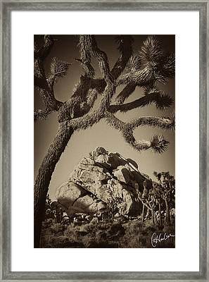 Rock Mound At Joshua Tree National Park Framed Print by Christine Hauber