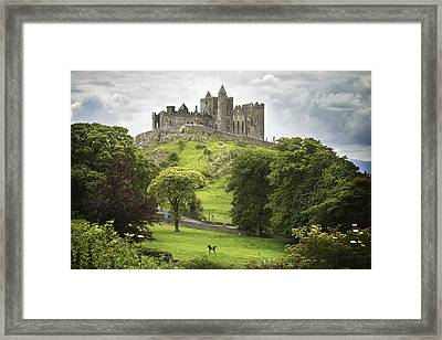 Rock Of Cashel Cashel County Tipperary Framed Print by Patrick Swan
