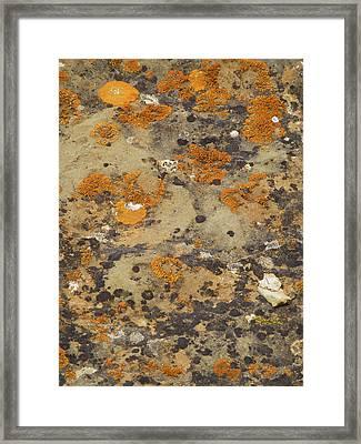 Rock Pattern Framed Print