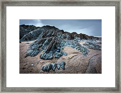 Rock Paw Framed Print by Svetlana Sewell