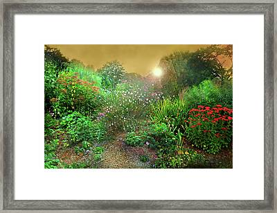 Rock Point Garden And Nature Center Framed Print by Diana Angstadt
