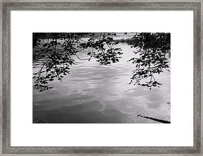 Rock Pond Framed Print
