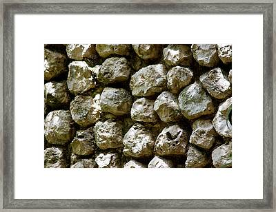 Rock Race Framed Print