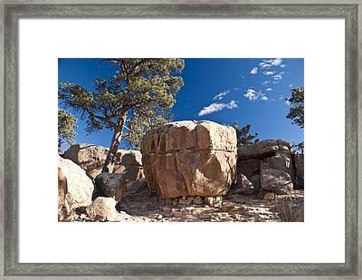 Rock Sentinel Framed Print