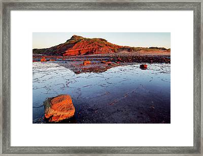 Framed Print featuring the photograph Rock Shelf At Long Reef 1 by Nicholas Blackwell