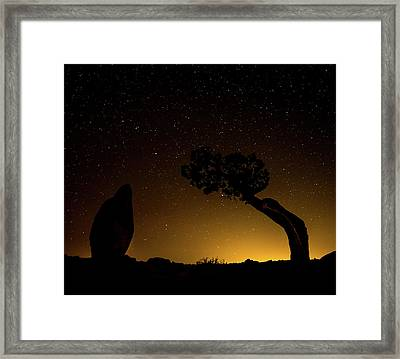 Framed Print featuring the photograph Rock, Tree, Friends by T Brian Jones