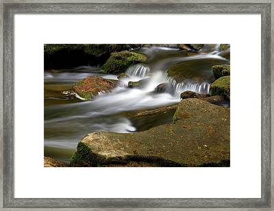 Rock Water And Moss Framed Print by Timothy McIntyre
