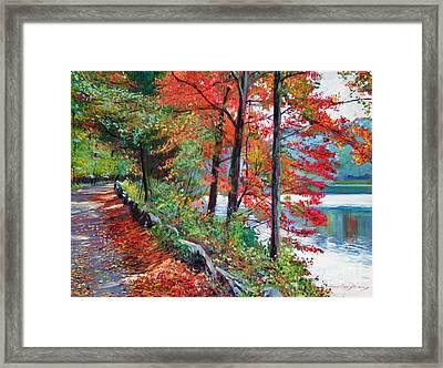 Rockefeller Park Framed Print by David Lloyd Glover