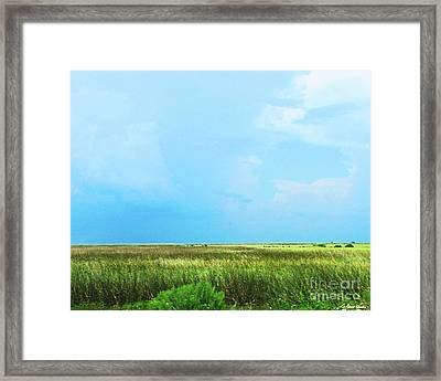 Rockefeller Wma Framed Print by Lizi Beard-Ward