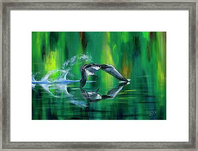 Rocket Feathers Framed Print