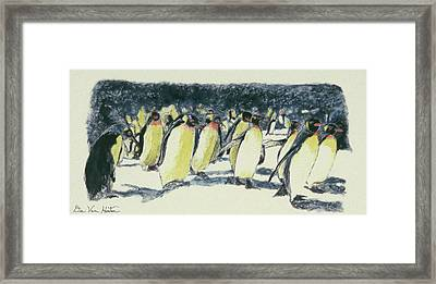Penguin Rockhoppers Framed Print