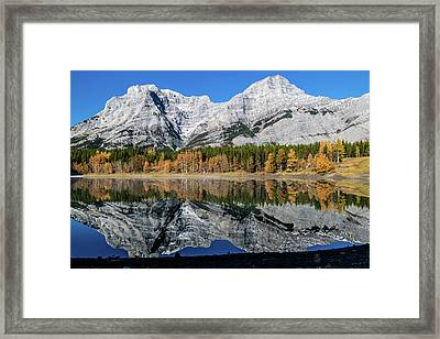 Rockies From Wedge Pond Under Late Fall Colours, Spray Valley Pr Framed Print