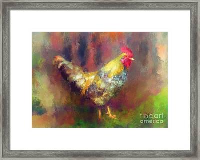 Rockin' Rooster Framed Print