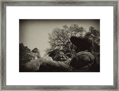 Rocks Framed Print by Amarildo Correa