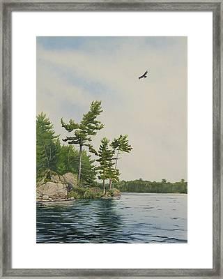 Rocks And Pines No.1 Framed Print by Debbie Homewood