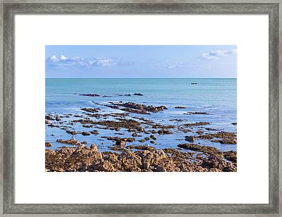 Framed Print featuring the photograph Rocks And Seaweed And Seagulls In The Irish Sea At Howth by Semmick Photo