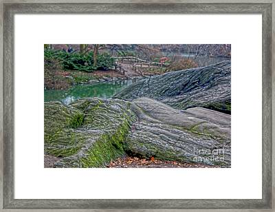 Rocks At Central Park Framed Print