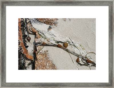 Rocks Longside Framed Print
