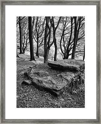 Rocks Over The Woods  Framed Print